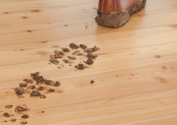 Péče a ochrana dřevěné podlahy